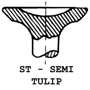 ST - Semi Tulip